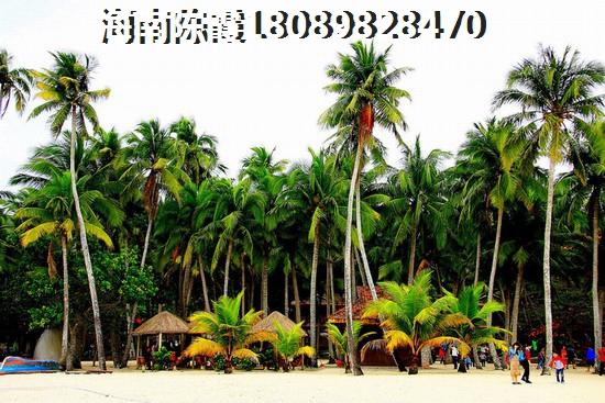 户型2两房两厅两卫约125㎡