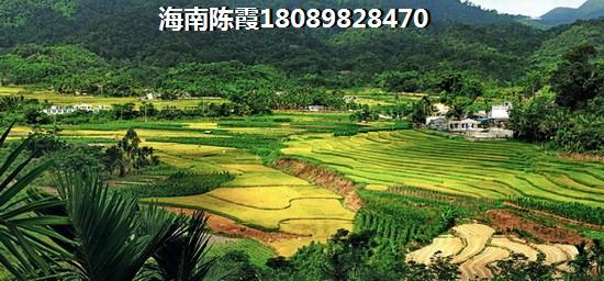 万宁国瑞城规划图
